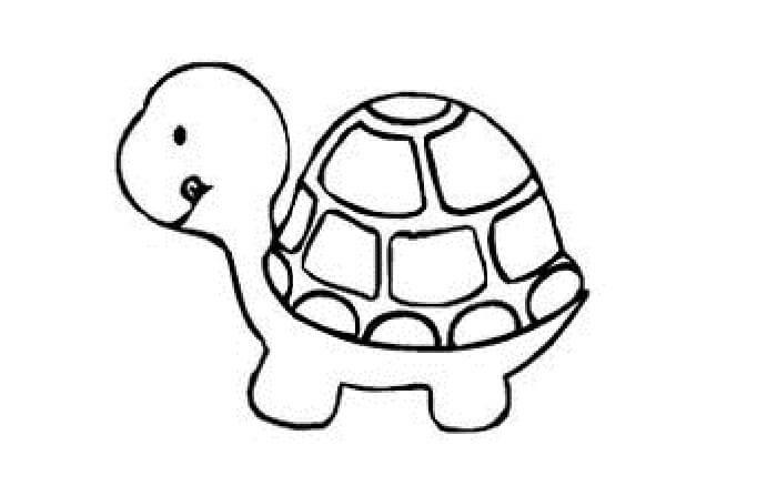 gambar sketsa hewan lucu