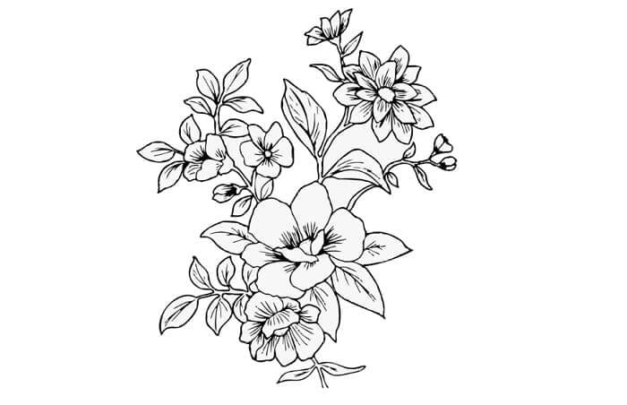 sketsa gambar flora